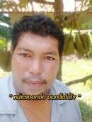 Avatar: Thamrong2535