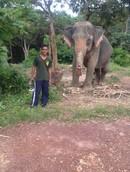 sarawut2912