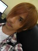 shiki_8666
