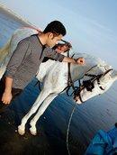 รูปโปรไฟล์: FakharSandhu01